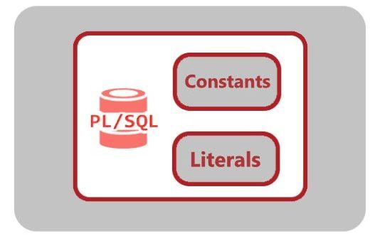 constant in pl/sql